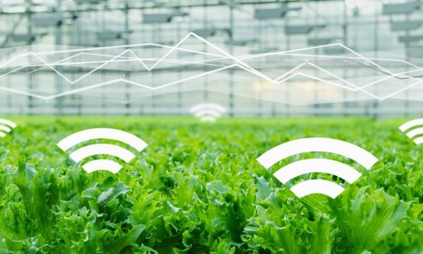 Turning farming into a tech business