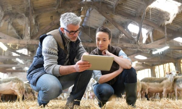 Advisors: collaborate to offer rural clients specialist advice