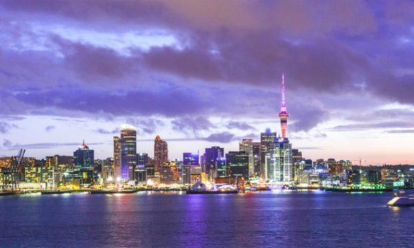 NZ startups